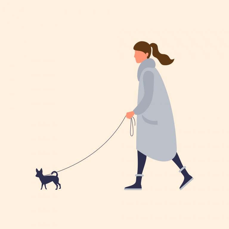 Illustration of woman walking dog
